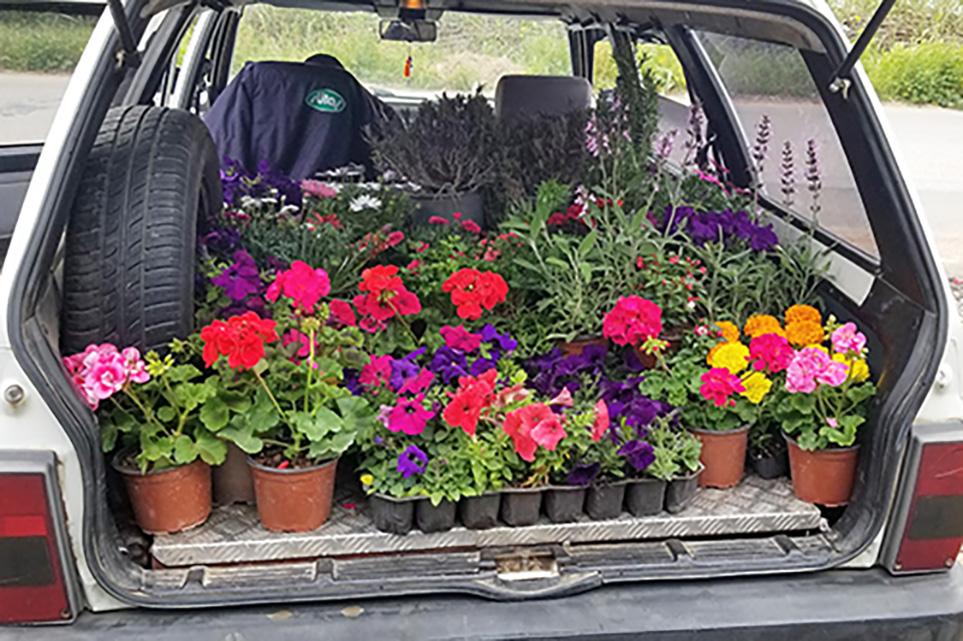 full car of flowers