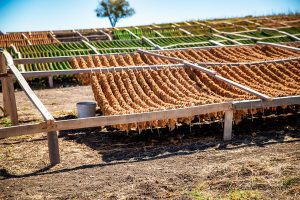 tobacco drying rack