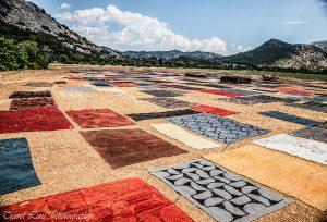 carpet fields co