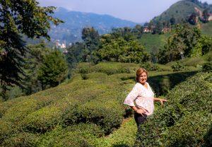 Lanell Tea Fields