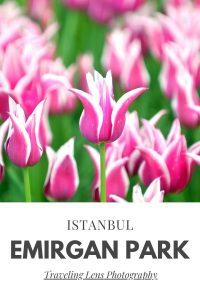 Emirgan Park Pin